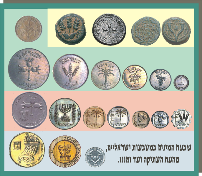 File:Matbeot isra 7minim.png
