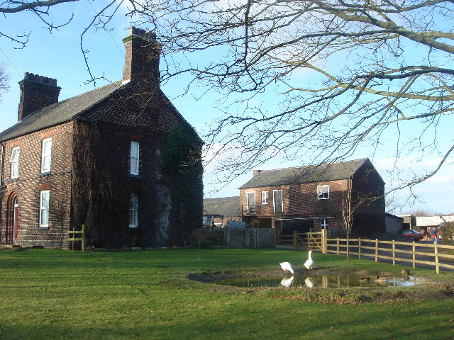 File:New Hill Farm duck pond - geograph.org.uk - 109355.jpg