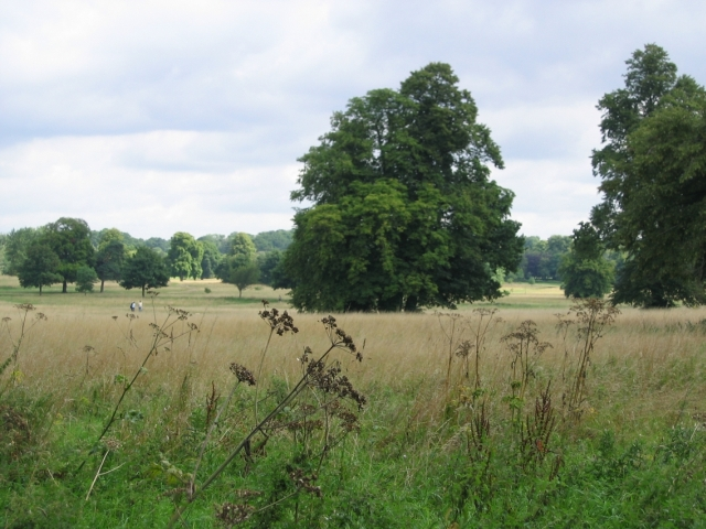 Nonsuch Park - geograph.org.uk - 106495
