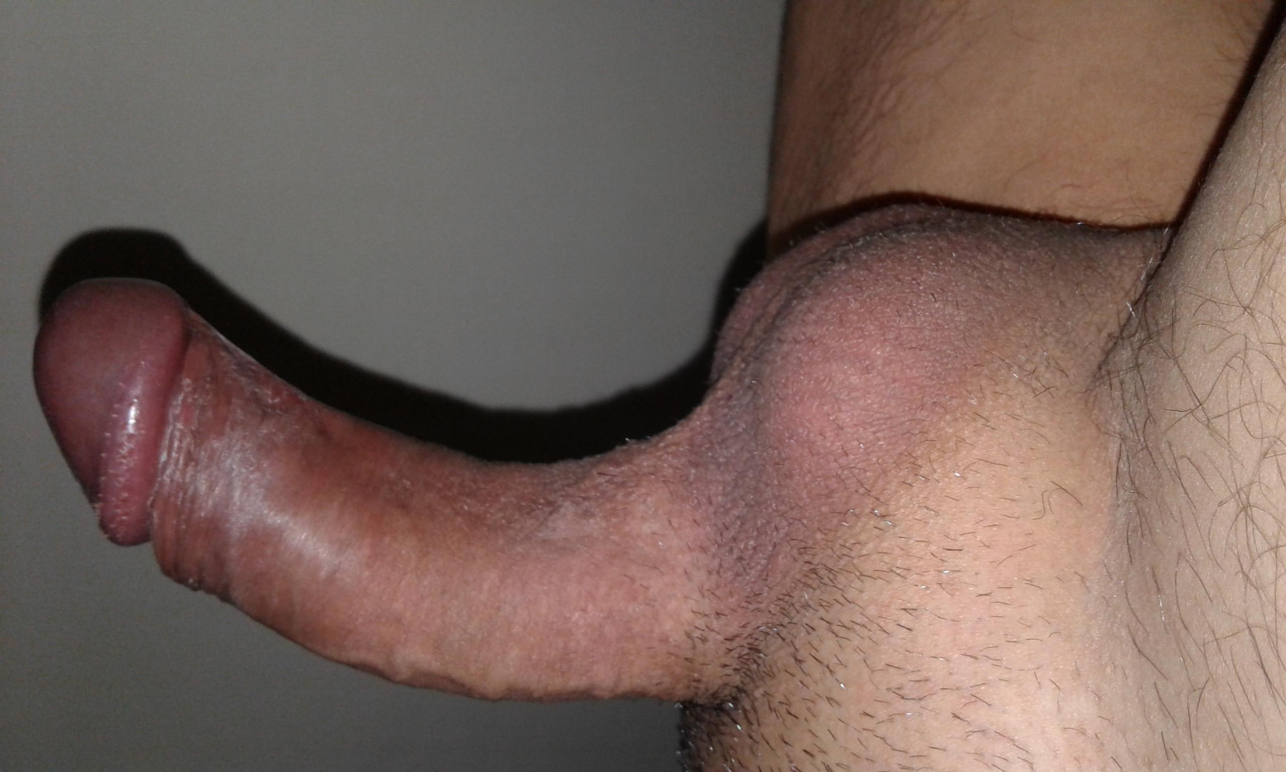 Imagen erecta pene humano