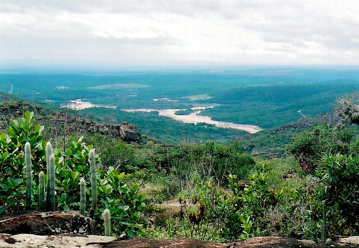 Ficheiro:Rio paraguacu.jpg