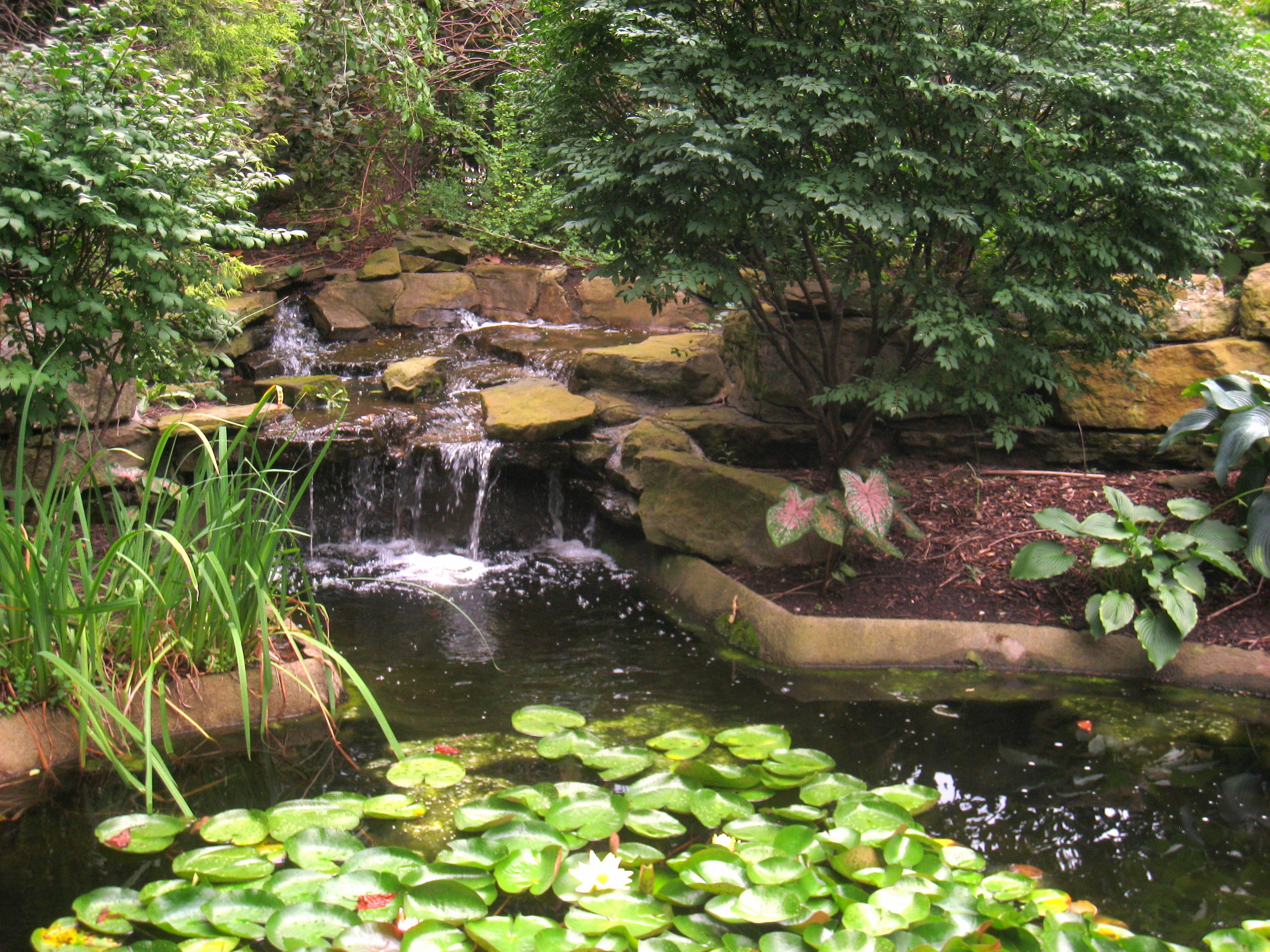 File Rodef Shalom Biblical Botanical Garden Img 1331 Jpg Wikimedia Commons