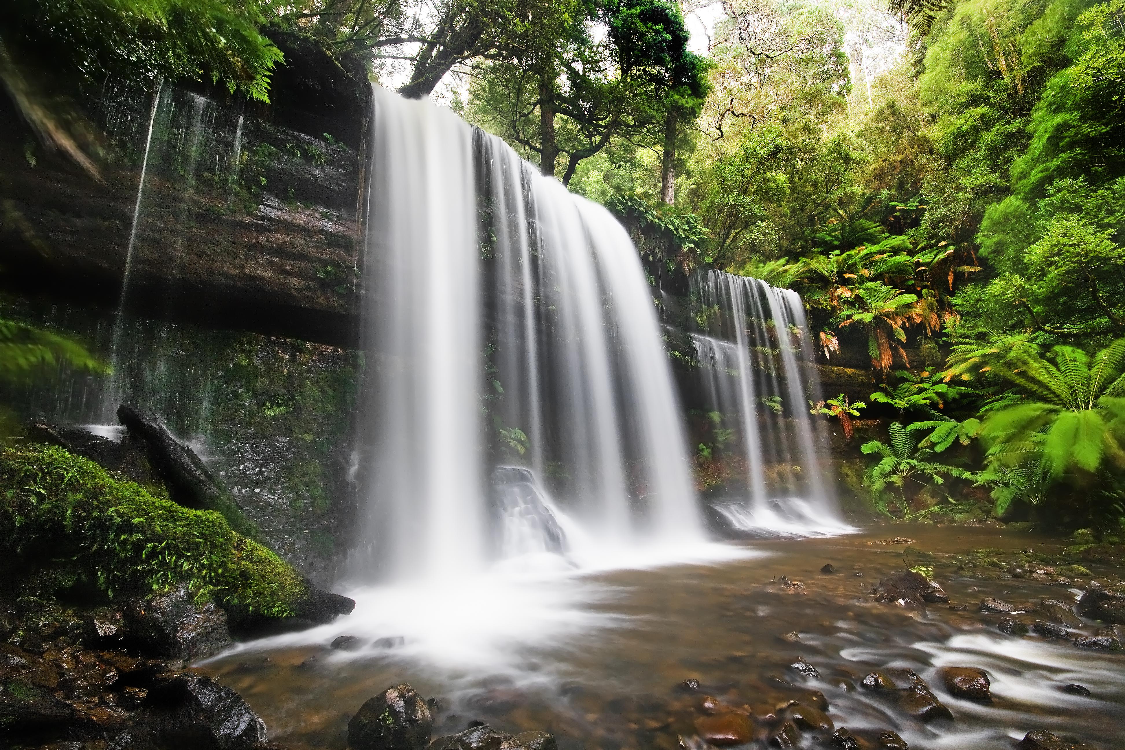Wasserfall eines Baches in Australien