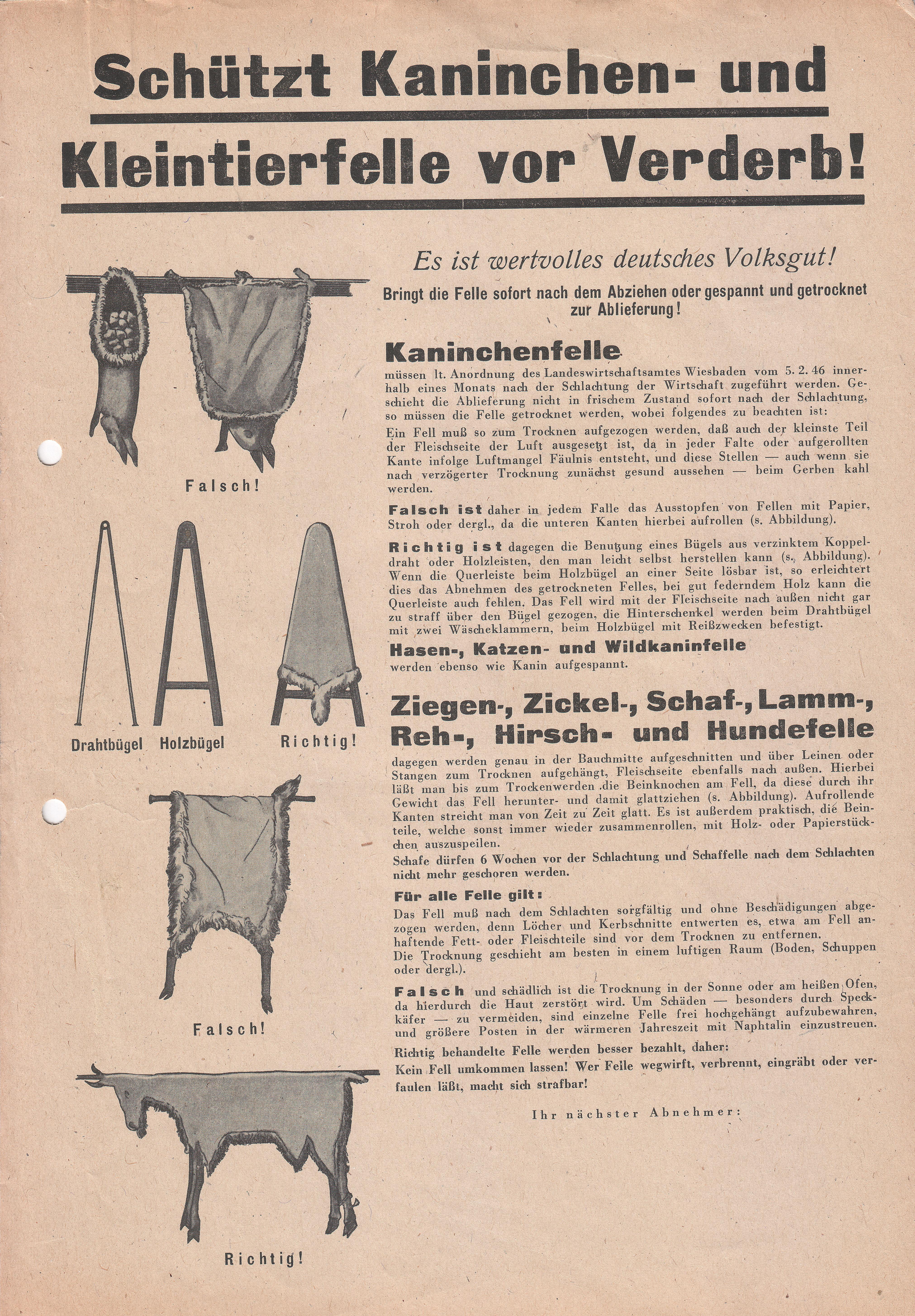 Beste Vintage Drahtbügel Galerie - Die Besten Elektrischen ...