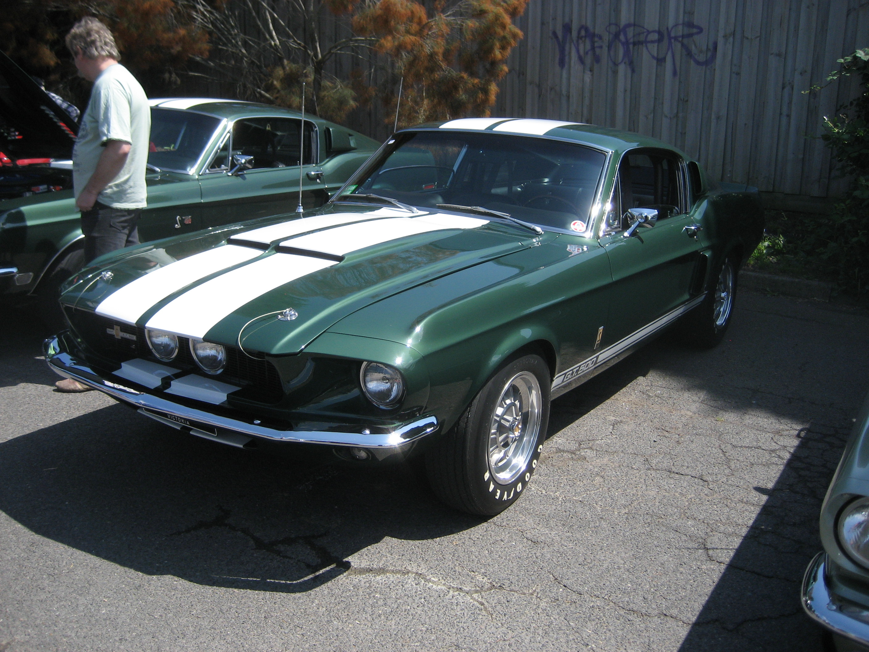 Best 25+ ford mustang shelby gt500 ideas on pinterest | ford.