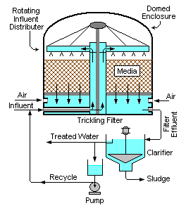 Schematic diagram of a  complete trickle filter process in waste treatment plants