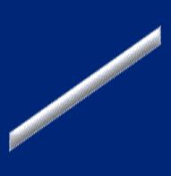 USCG SR.png