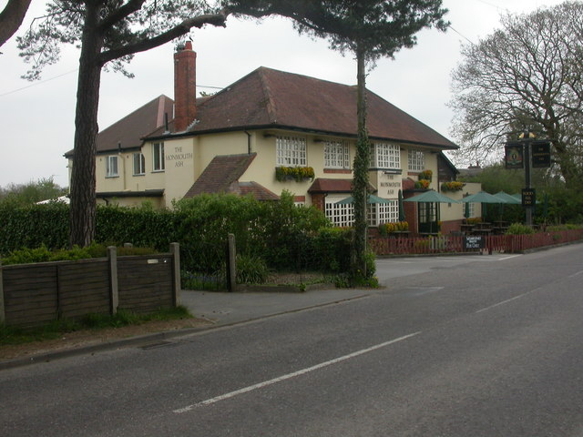File:Verwood, The Monmouth Ash - geograph.org.uk - 1258388.jpg