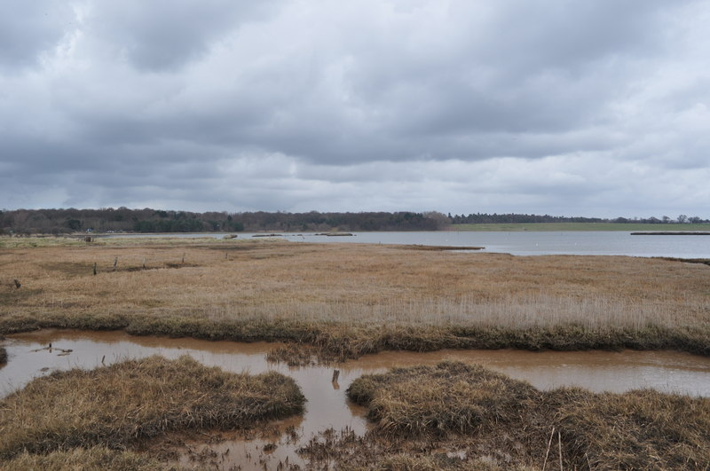 View over Blythburgh Marshes - geograph.org.uk - 1775510