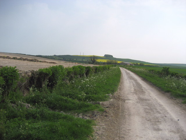 Wessex Ridgeway on Roundway Down - geograph.org.uk - 419597