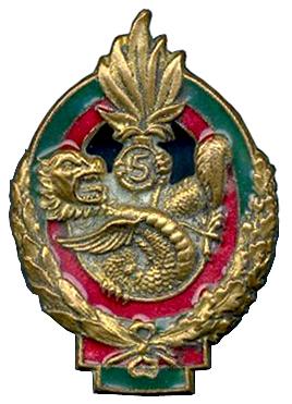5e régiment étranger d'infanterie 5%C2%B0_REI_Type_2