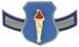 AFJROTC AMN insignia.png