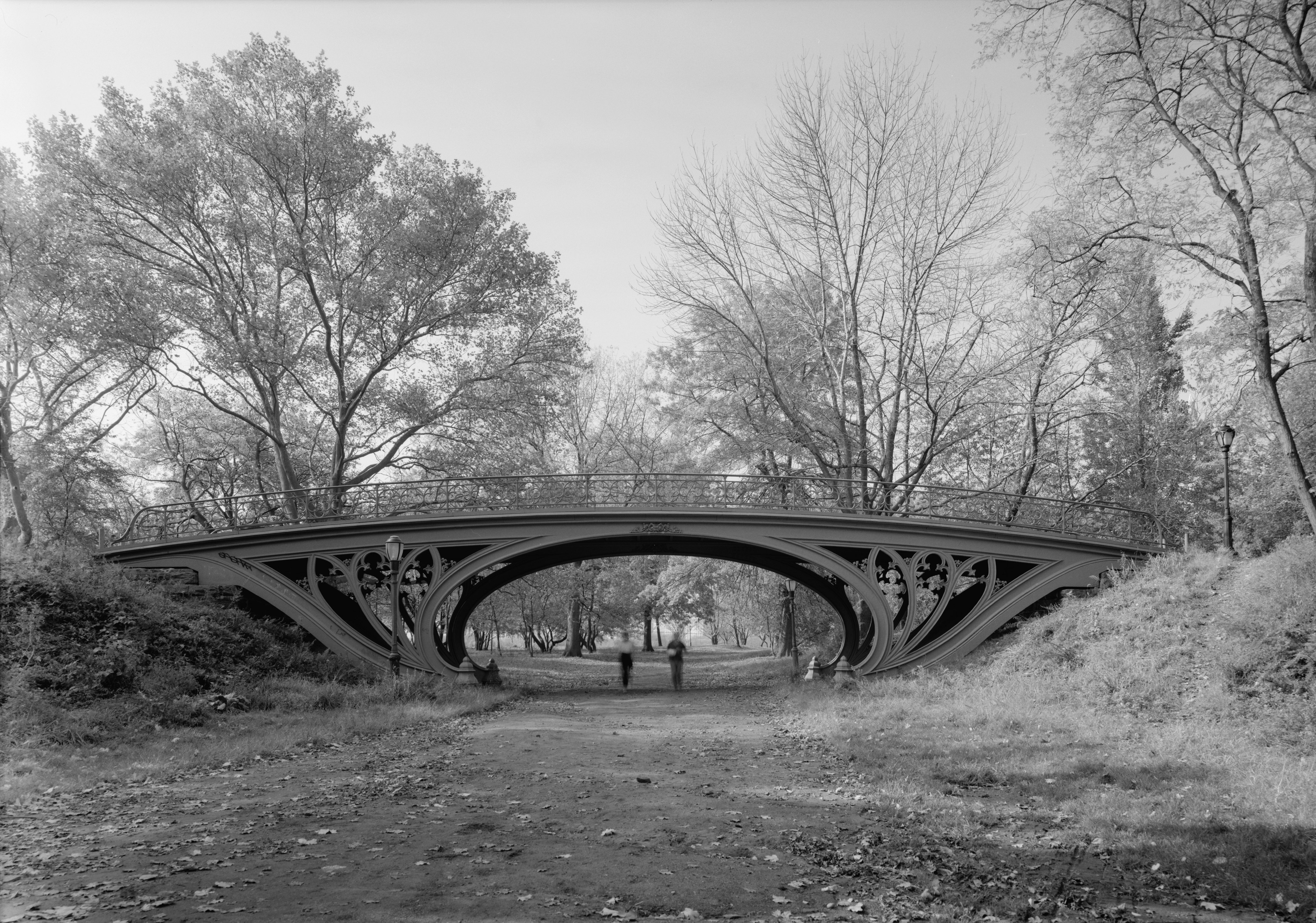a history of central park in Rogers (the central park book), a landscape designer and central park conservancy cofounder, blends a history of central park with her own persistent efforts to preserve the park in this elegant memoir she opens with a description of the park's deteriorating state in the mid-1960s and early '70s, when it.