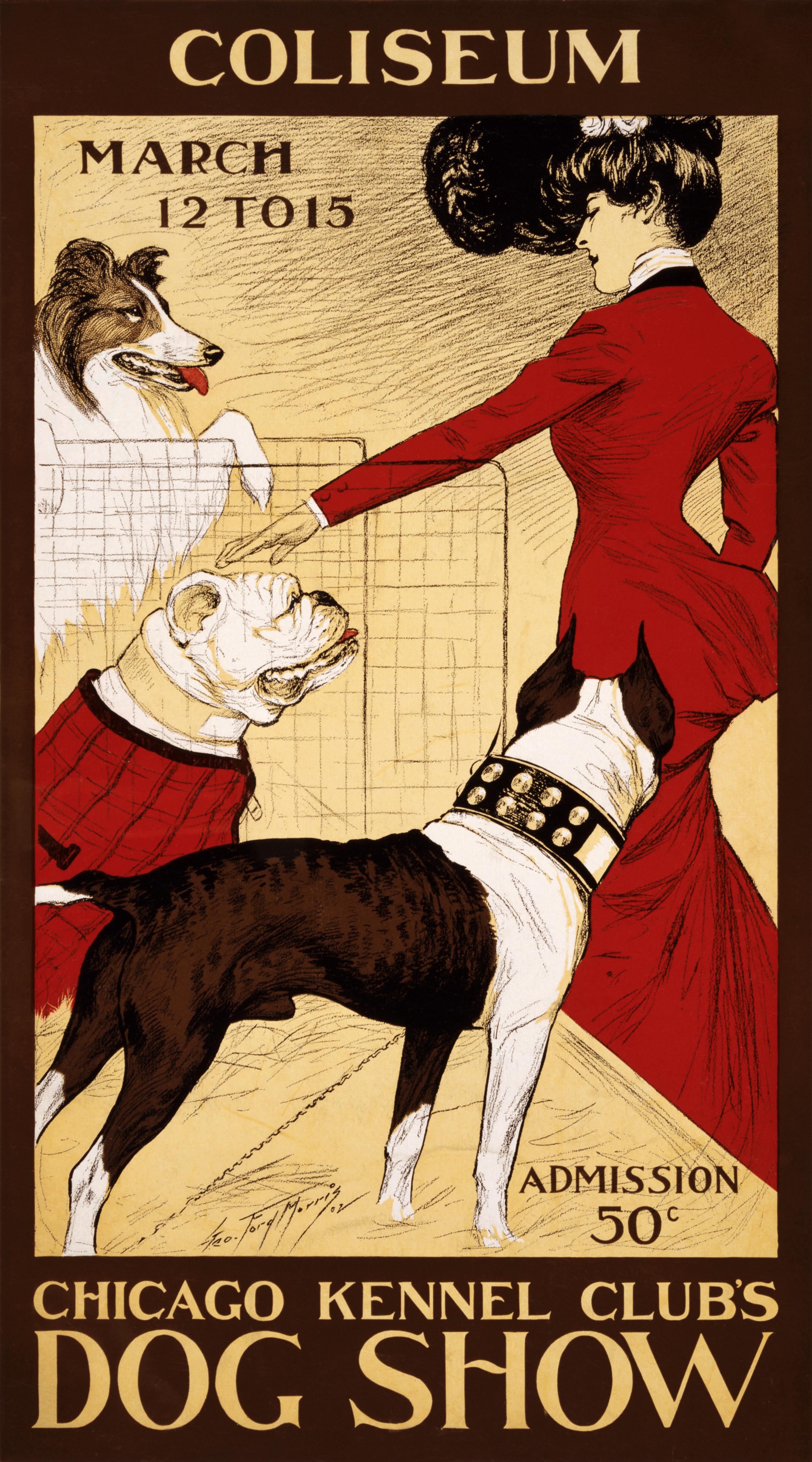 Dog Moves Kennel