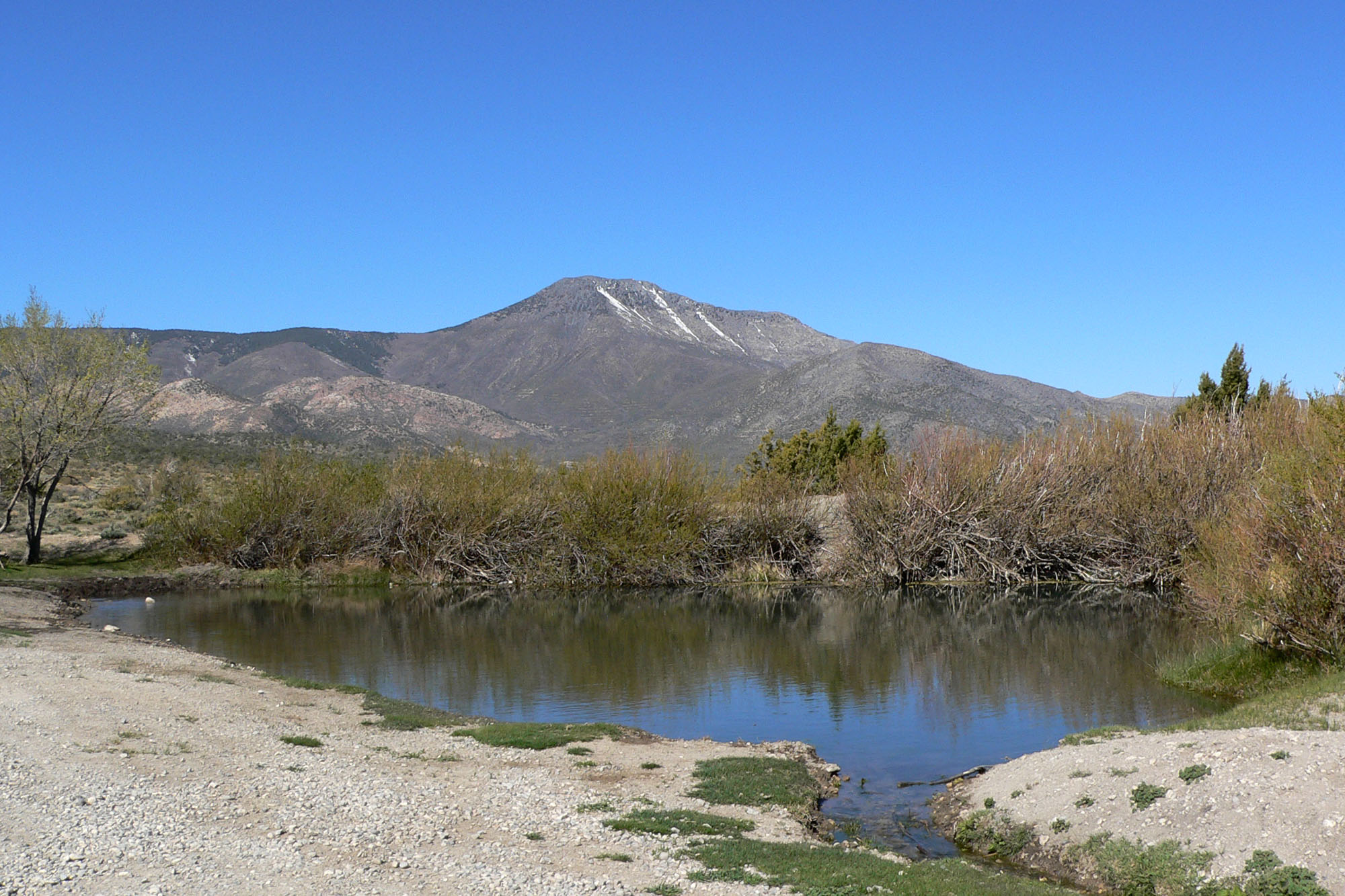 File cold creek nevada wikimedia commons for Fishing license nevada