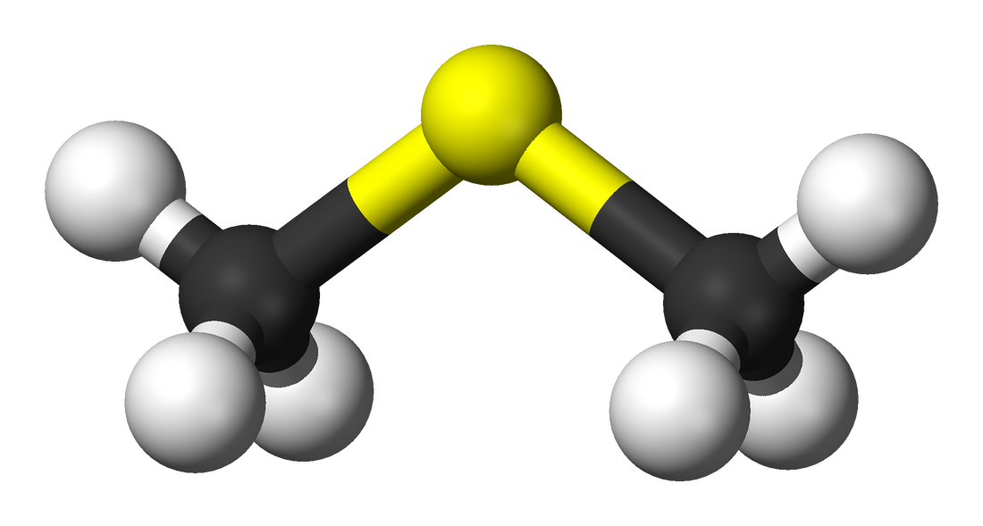 File:Dimethyl-sulfide-3D-balls.png - Wikimedia Commons