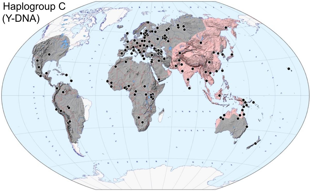 Haplogroup y chromosome Haplogroup H