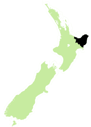 East coast electorate 2008.png