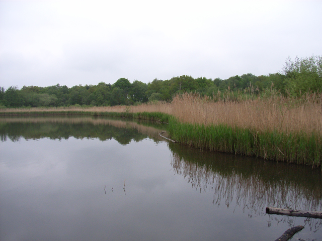 Fleet Pond - geograph.org.uk - 170378