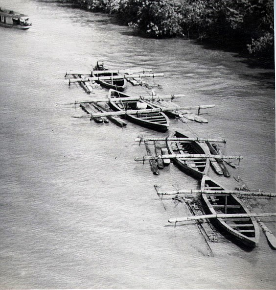 Hardwood logs transported down the Suriname River, Suriname, South America in 1955