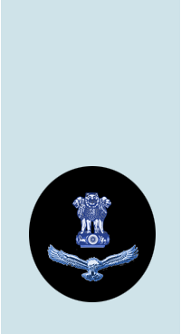 IAF JWO Shoulder.png