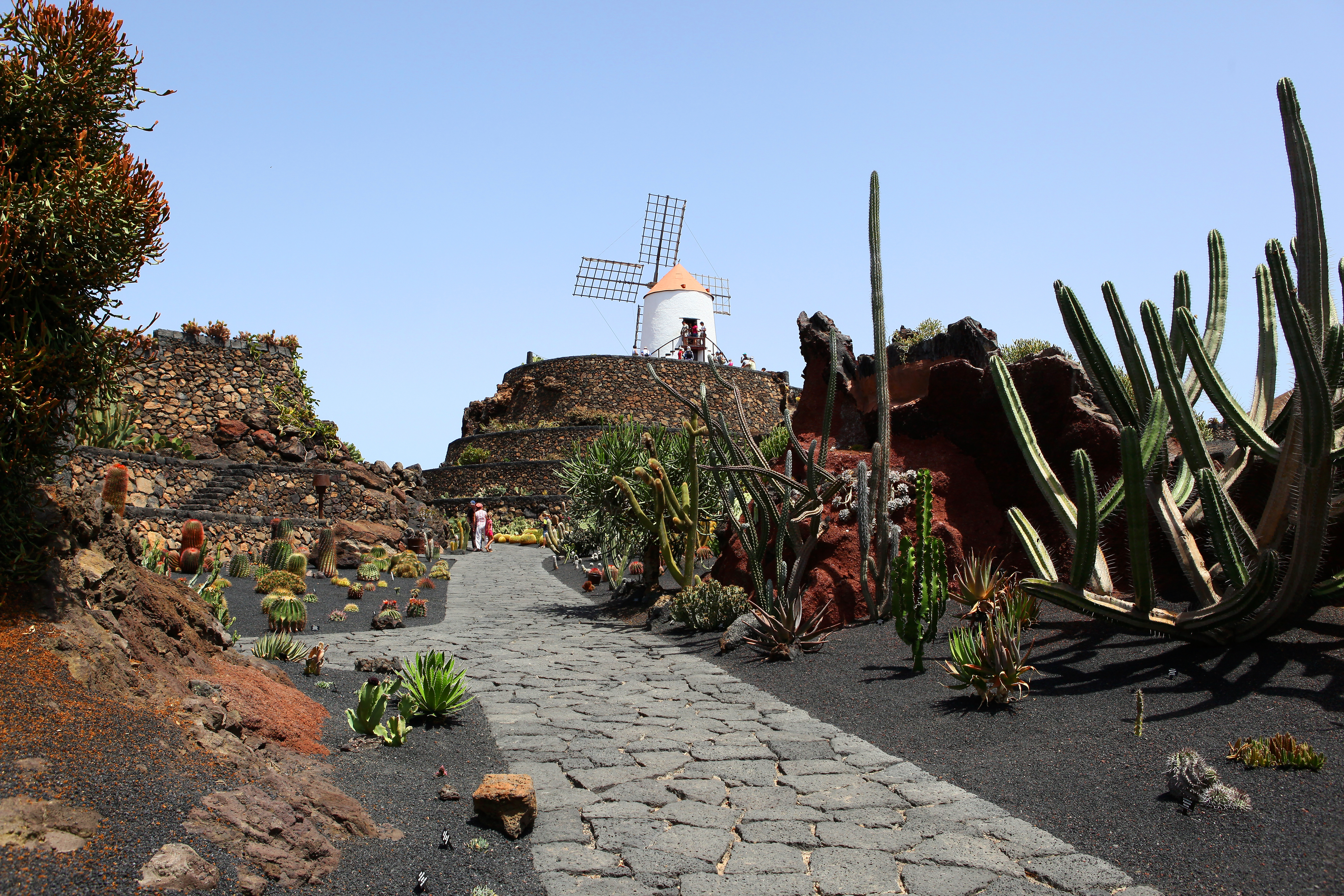 Jardin De Cactus Jardn de cactus lanzarote spanien rm video in