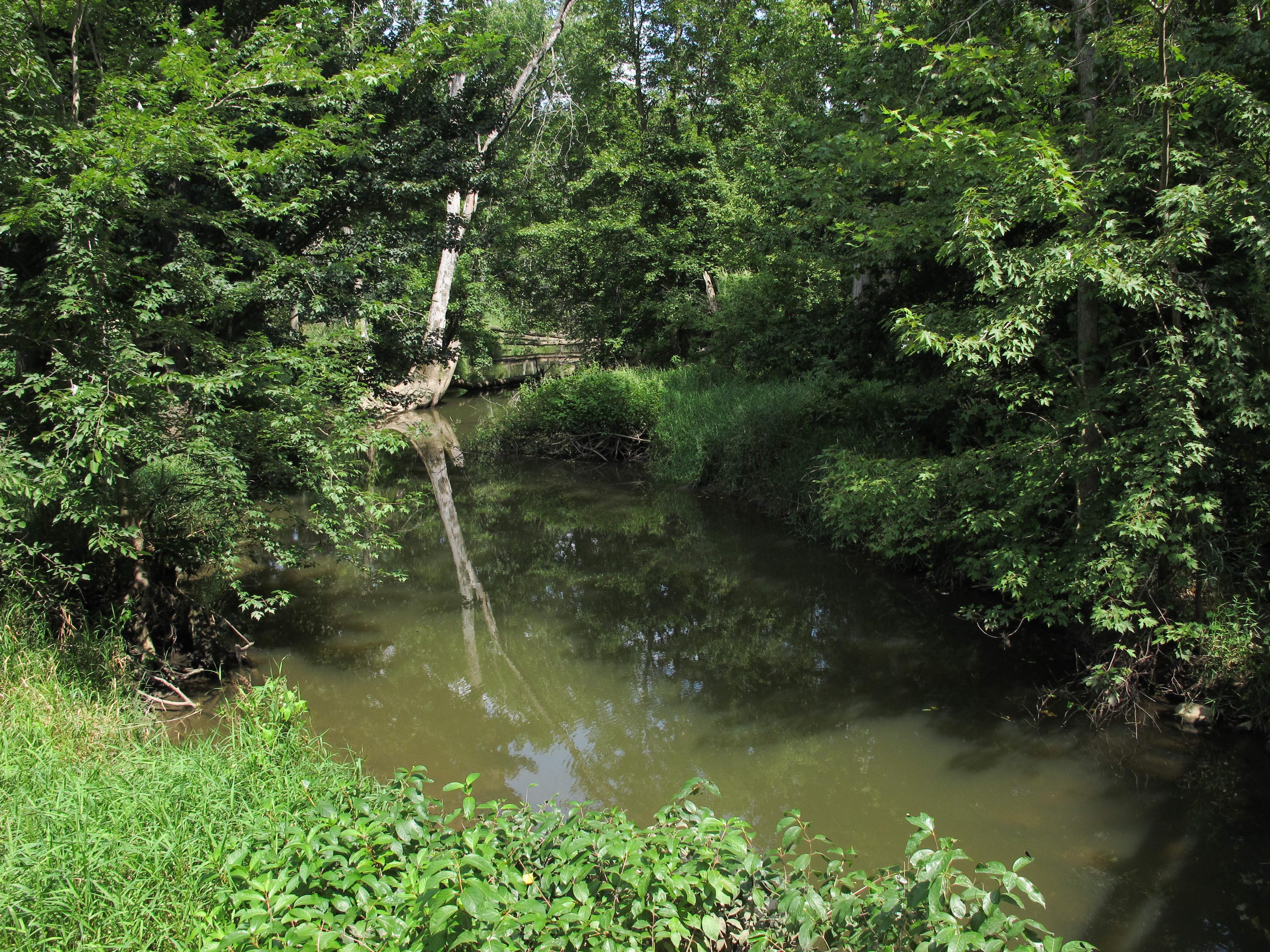 Little Thornapple River (Eaton County) - Wikipedia