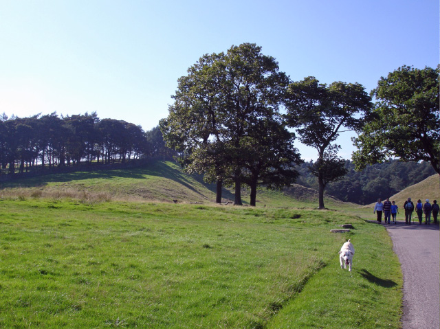 File:Lyme Handley, on the North Cheshire Way in Lyme Park - geograph.org.uk - 263430.jpg
