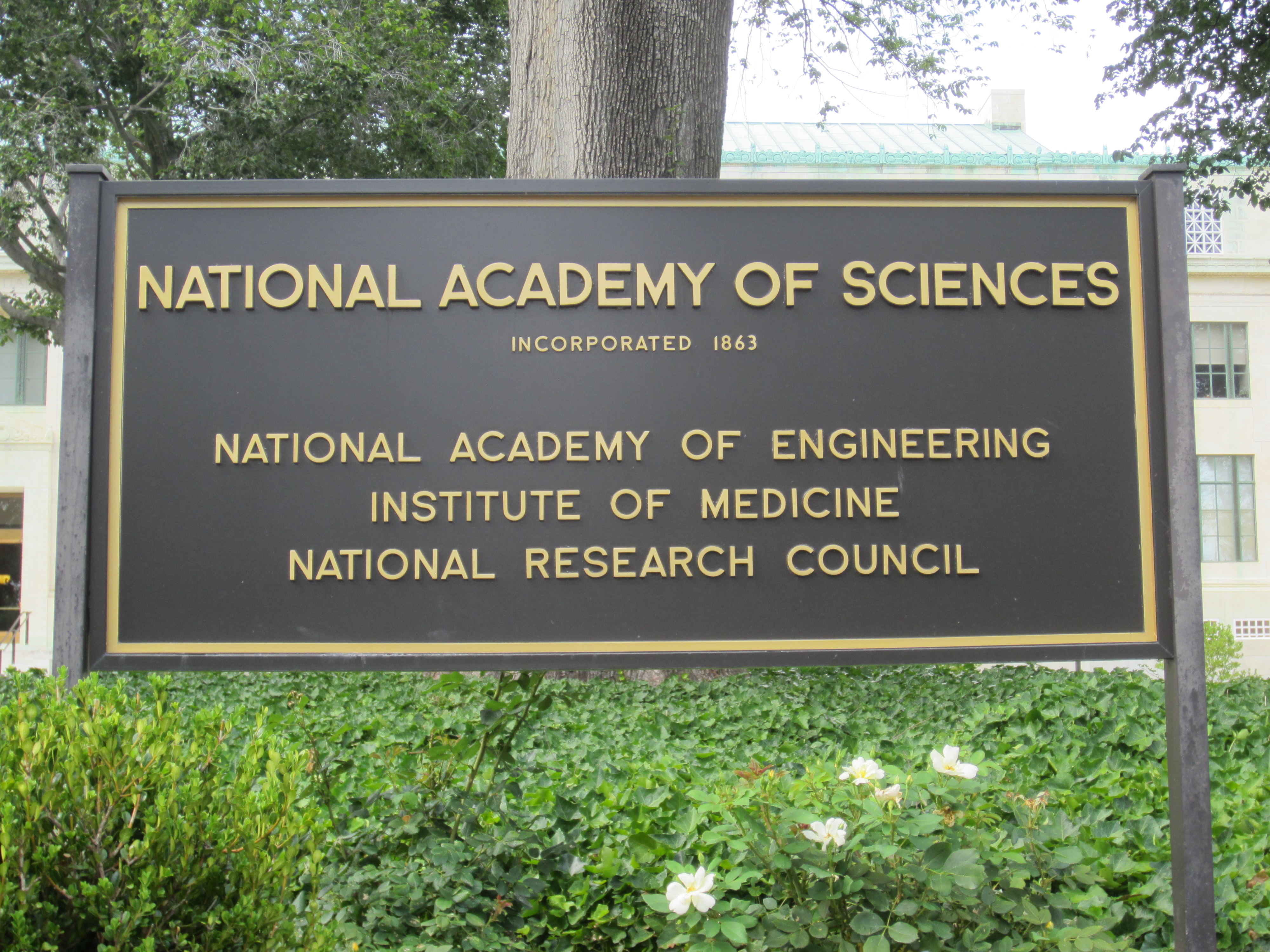 National Academy of Sciences Report on GMOs