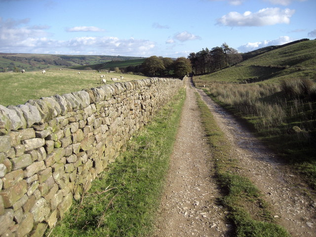 Nidderdale Way approaching Hillend - geograph.org.uk - 1025911