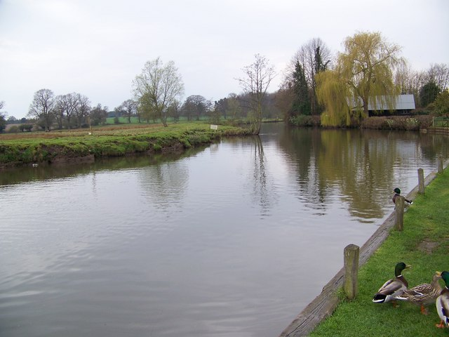 The River Bure, Coltishall - geograph.org.uk - 773002
