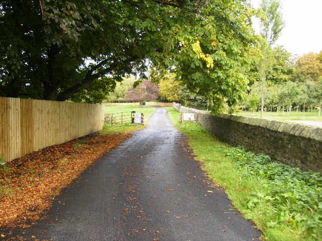 The driveway to Bowes House on the Lambton Estate - geograph.org.uk - 569308