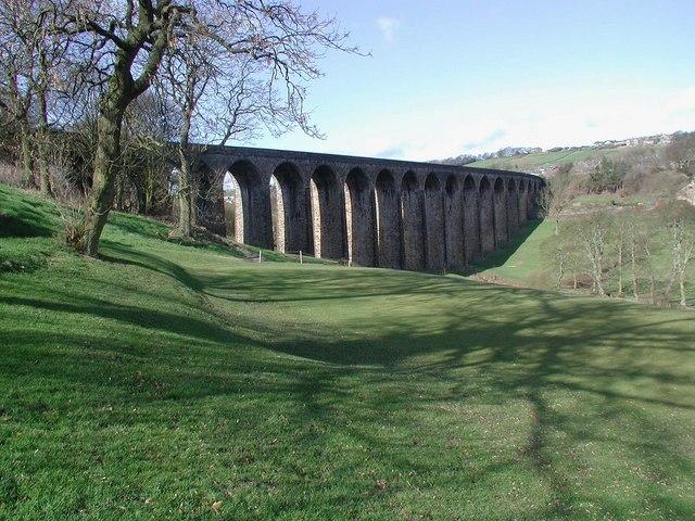 Thornton Viaduct - geograph.org.uk - 358760