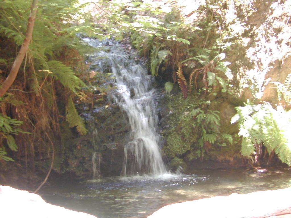fall creek  san mateo county  california