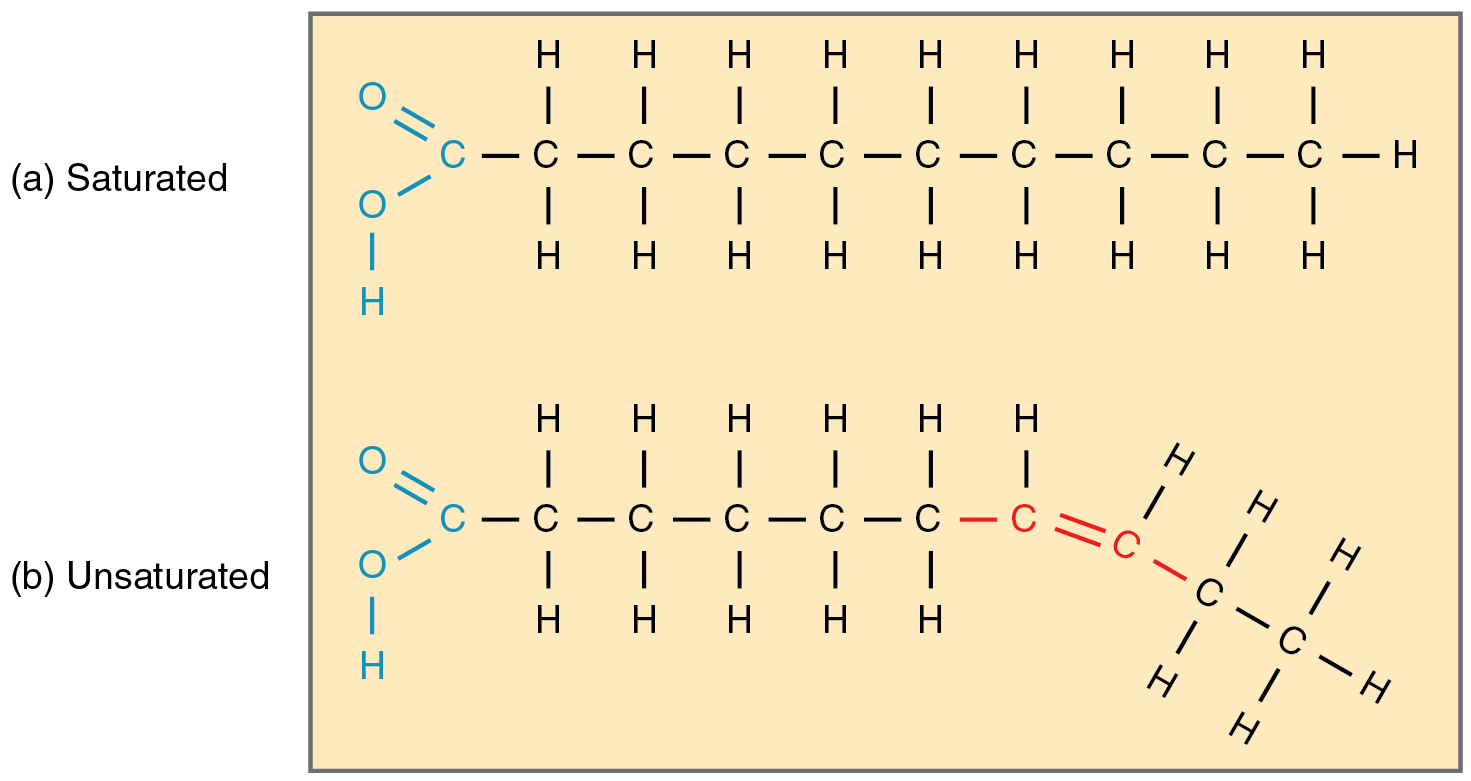 Which Triglycerides Are Liquid At Room Temperature