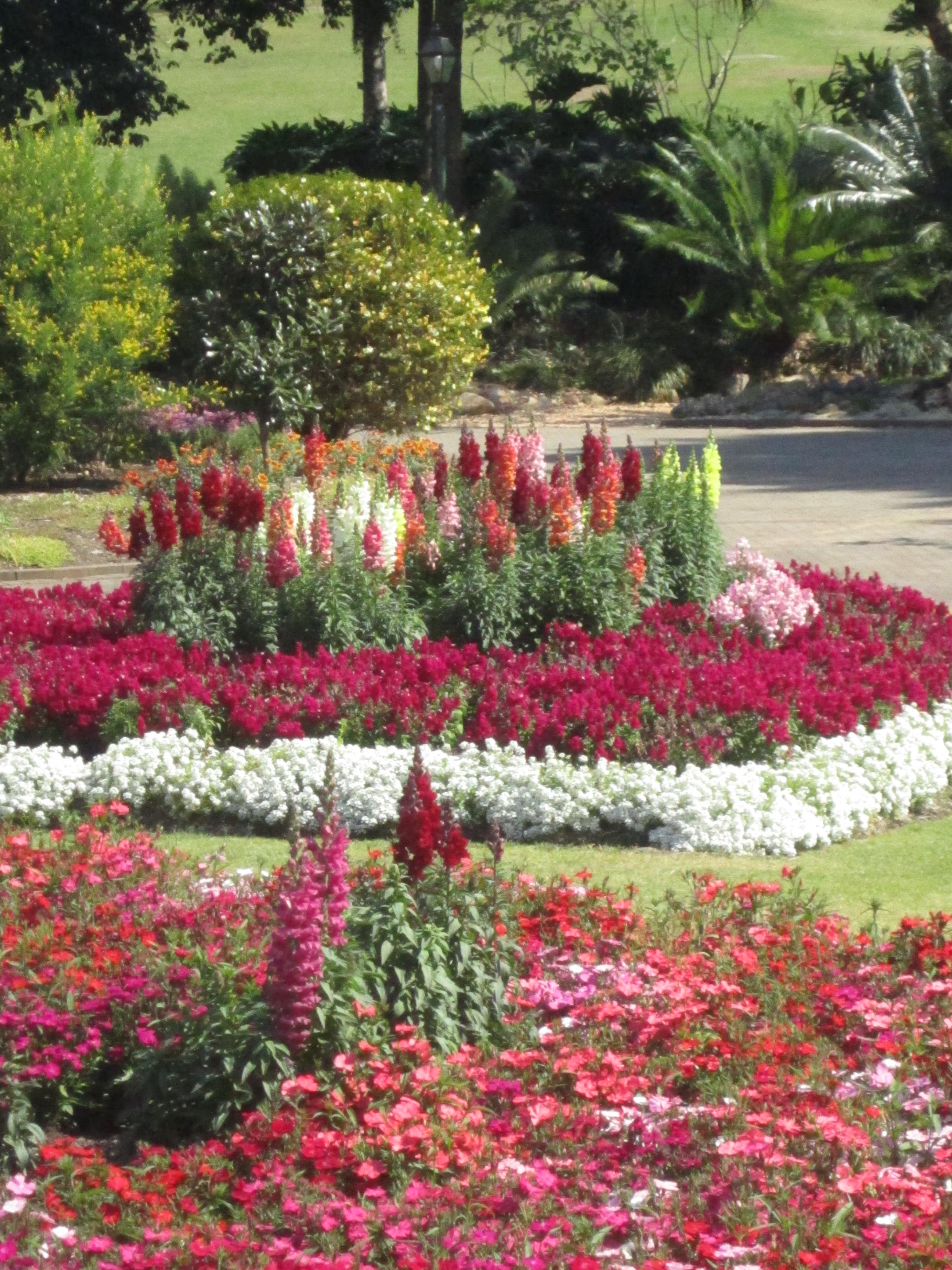 File bcbg ornamental gardens 02 jpg wikimedia commons for Ornamental garden