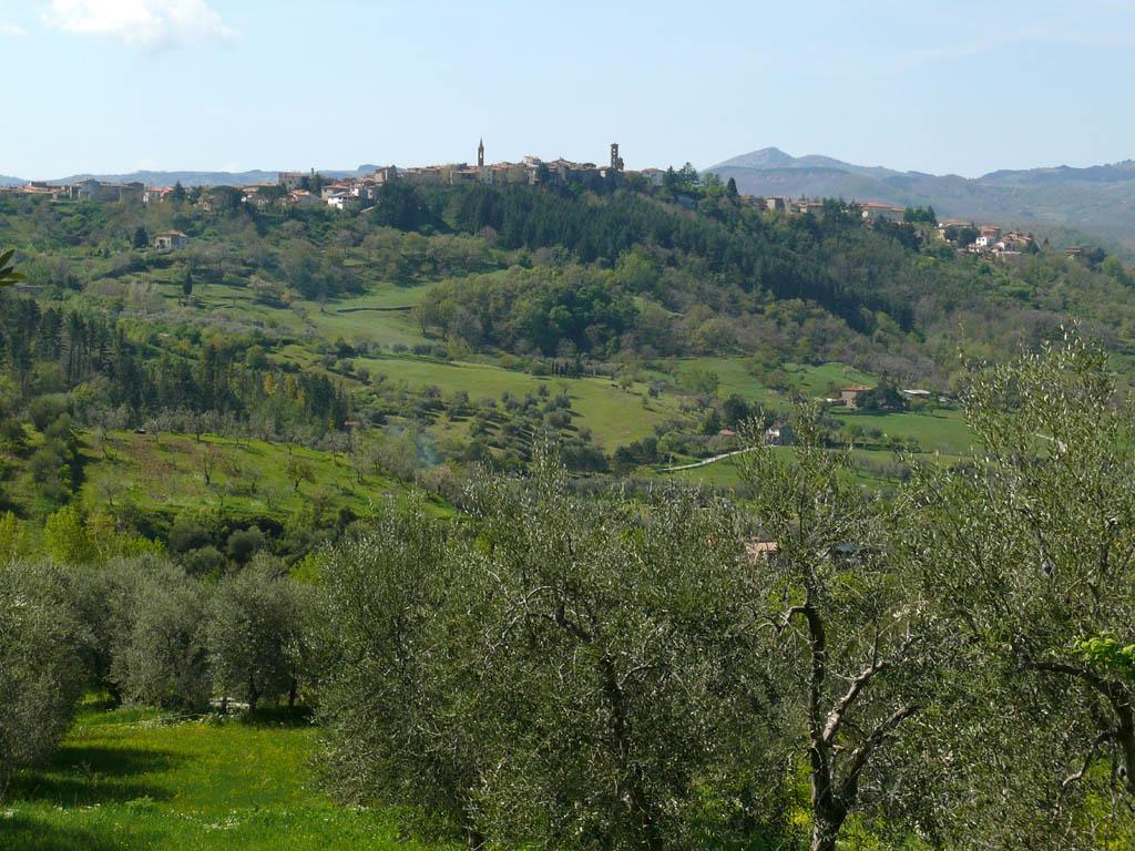 Casteldelpiano z10.jpg