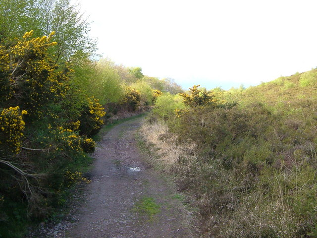 East Devon Way below Woodbury Common - geograph.org.uk - 163108