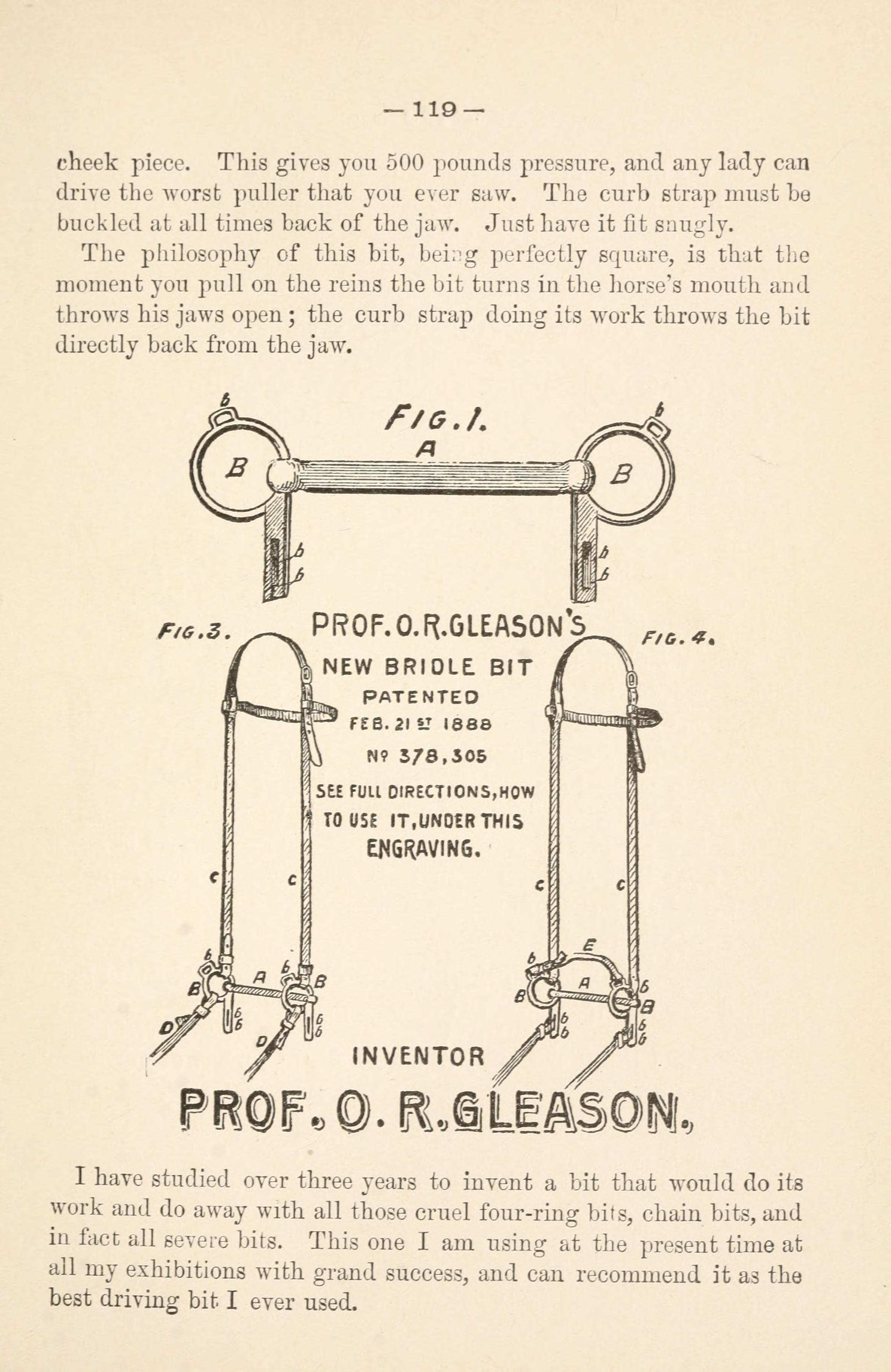 File:Gleason's horse book (Page 119) BHL18285111 jpg - Wikimedia Commons