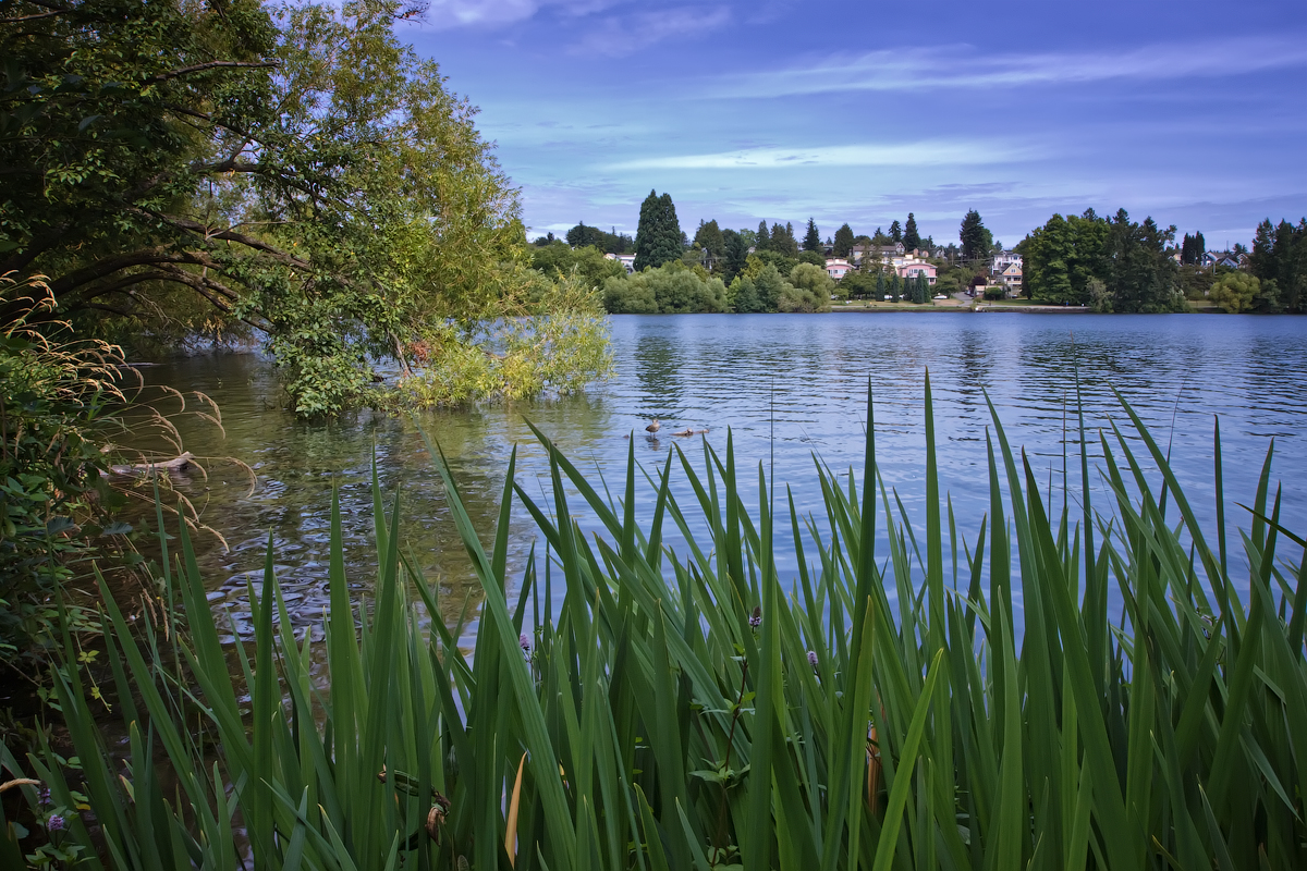 Green Lake Neighborhood Guide