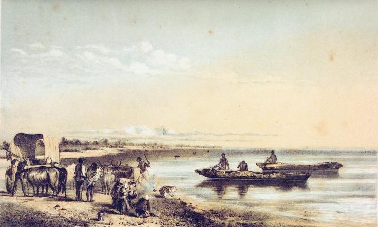 ンガミ湖 - Wikipedia