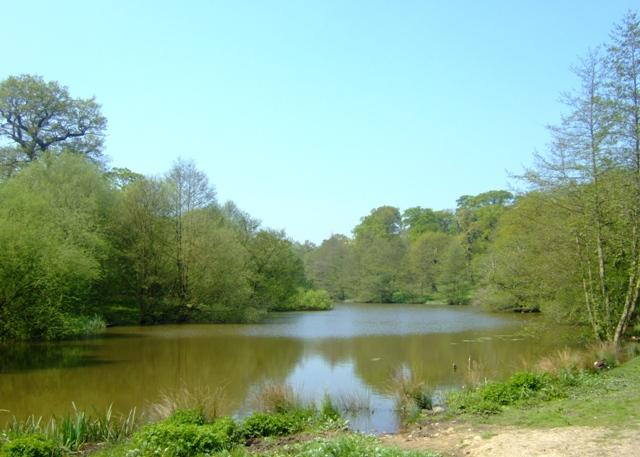 Lake in Calke Park - geograph.org.uk - 797541