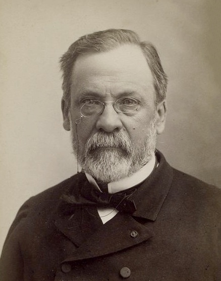 the works of louis pasteur Little was known about preventative medicine in the days of louis pasteur today, we owe all the discoveries in the fields of microbiology and immunology to his work.