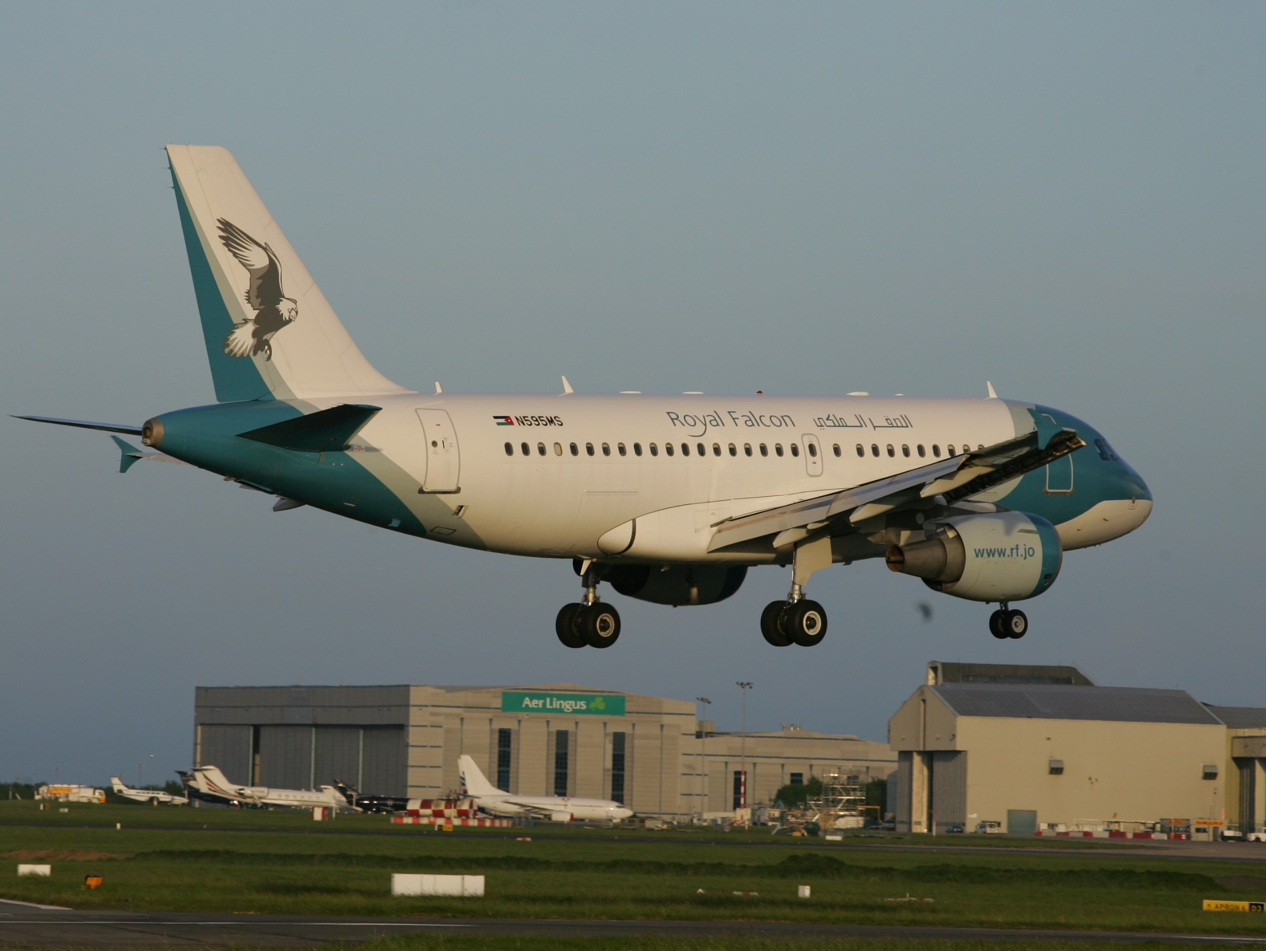File:N595MS A319 Royal Falcon - Flickr - D464-Darren Hall.jpg - Wikimedia  Commons