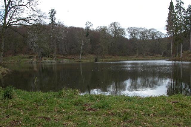 New Pool, Shrawley Wood - geograph.org.uk - 139521