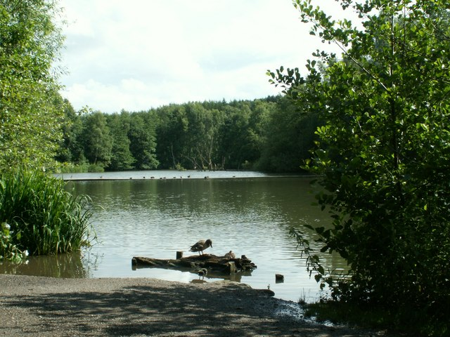 Newmillerdam looking to the causeway. - geograph.org.uk - 483552