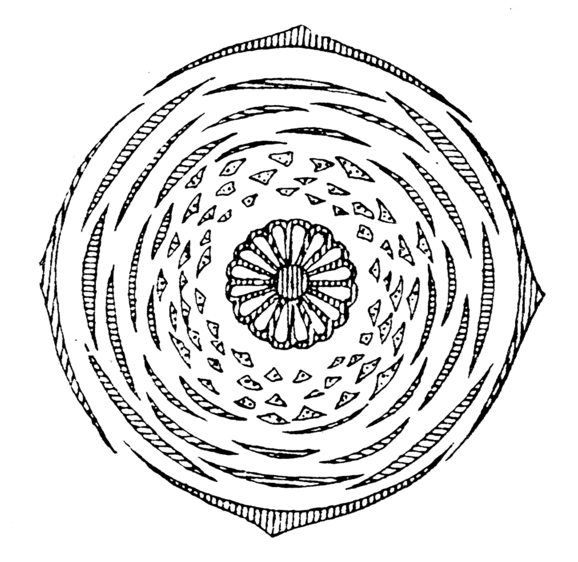 dosiero nymphaea flowerdiagram png
