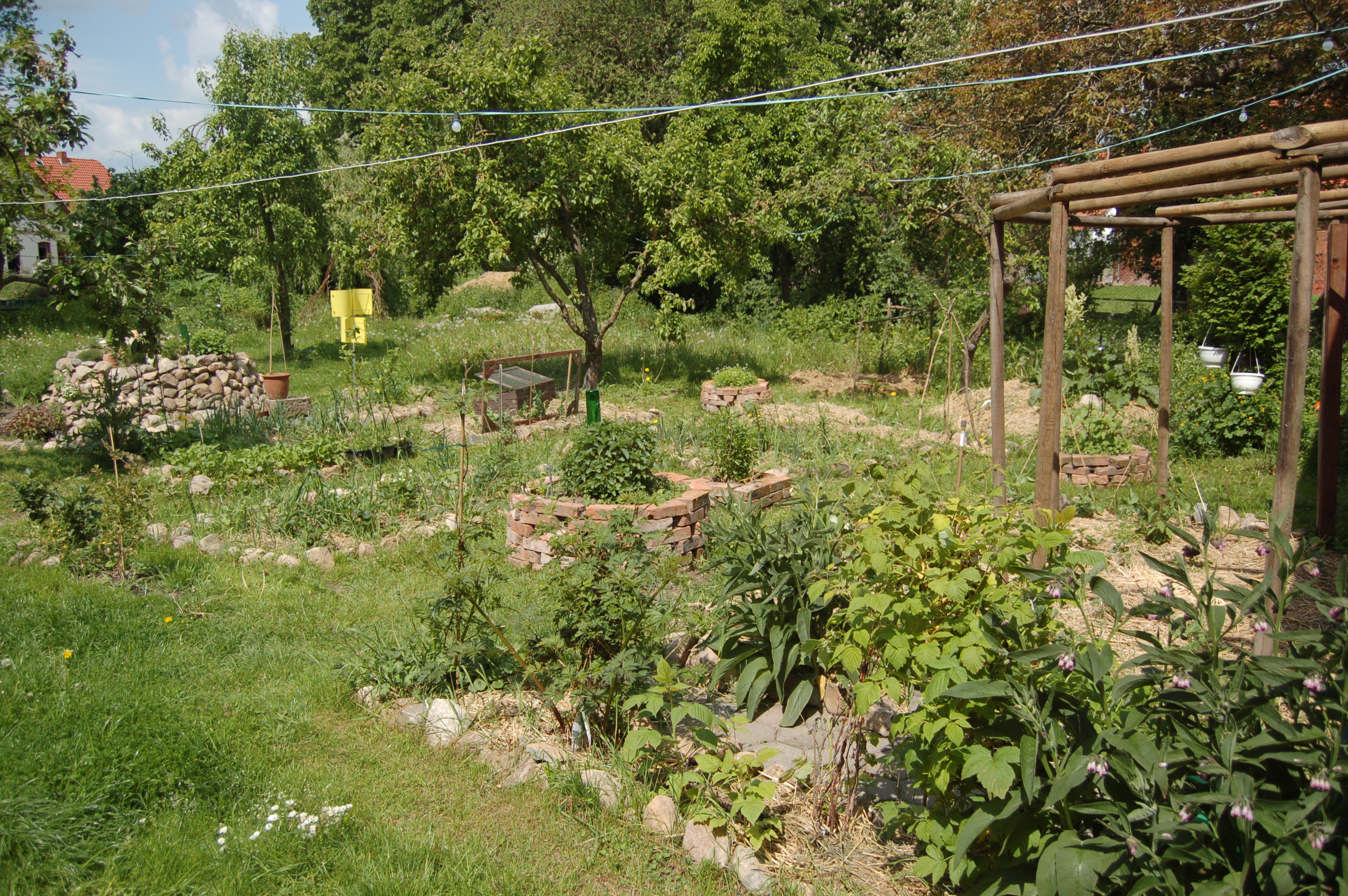 File permaculture garden jpg wikimedia commons for Permaculture garden designs