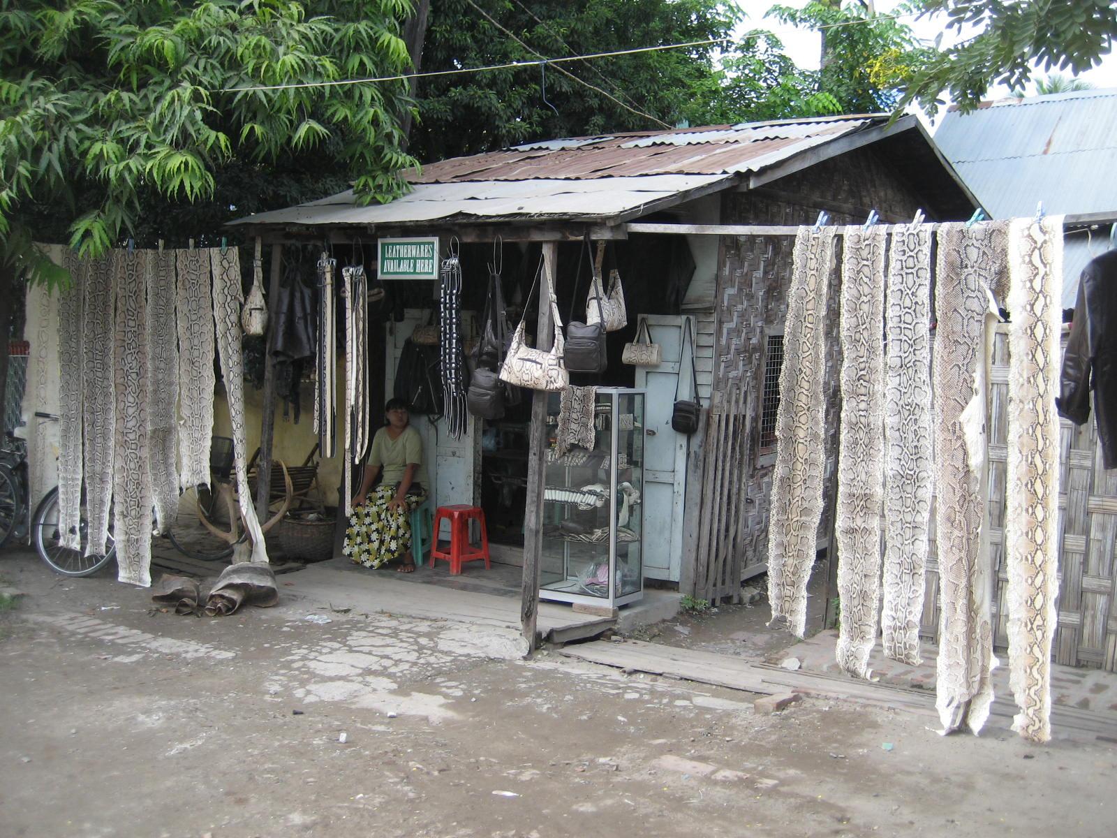 Python_Skins_Burma.jpg#