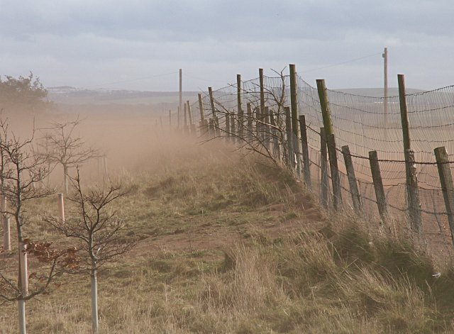 File:Soil erosion, brownout - geograph.org.uk - 367915.jpg